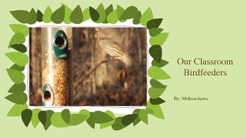 Birds: Visitors at the Bird feeder