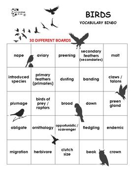 Birds Vocabulary Bingo