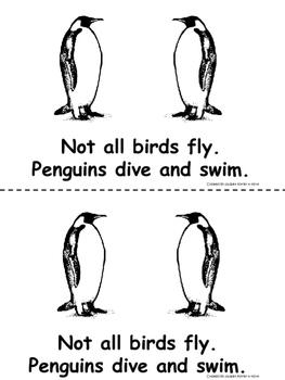 Birds (What Are Birds?)