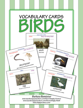 Bird Word Cards
