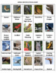 Birds Word Search Puzzles -- Set 2