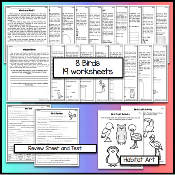 Birds Worksheets and Activities with Test and Answer Keys