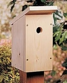 Birds and Birdhouse Unit