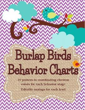 Birds and Burlap Theme Behavior Charting System *editable*