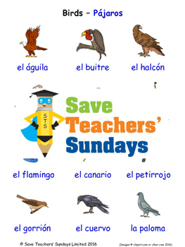 Birds in Spanish Worksheets, Games, Activities and Flash Cards (1)