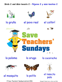 Birds in Spanish Worksheets, Games, Activities and Flash Cards (2)