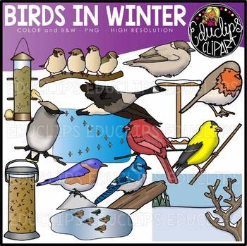 Birds in Winter Clip Art Set {Educlips Clipart}