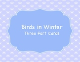 Birds in Winter Three Part Cards