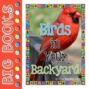Birds in Your Backyard - Big Book - Science