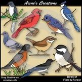 Birds of Field & Forest Clipart