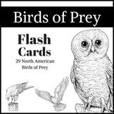North American Birds of Prey Flashcards