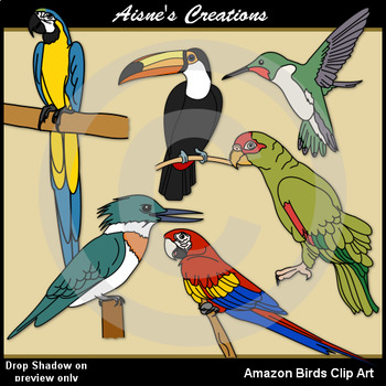 Birds of the Amazon