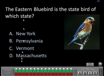 Birds of the States - A PowerPoint Drain Your Brain Game