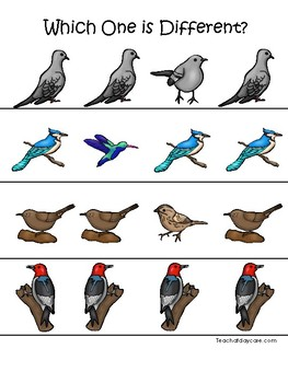 Birds themed Which One is Different. Printable Preschool Game