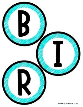 Birthday Bulletin Board Header - Bright Turquoise Scribbles