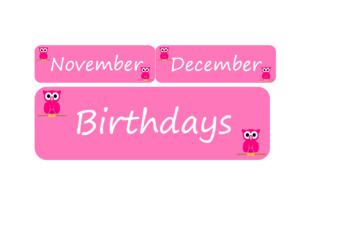 Birthday Bulletin Board Pink Owl Poster