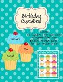 Birthday Cupcakes - Turquoise Dot Theme