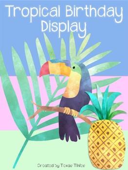 Birthday Display: Tropical