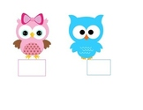 Birthday Owl Display