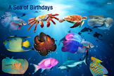 "Birthday Poster ""Under the Sea"" Theme"