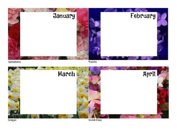 Birthday Signs - Flower Background