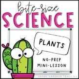 Bite-Size Science - Plants