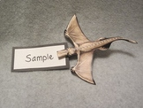 Biting Pterodactyl. Fun Dinosaur 3D Craft Art