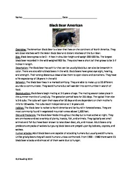 Black Bear American - Review Article Questions Vocabulary Word Search