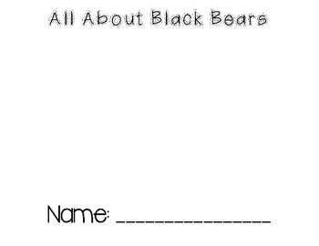 Black Bears Mini Book