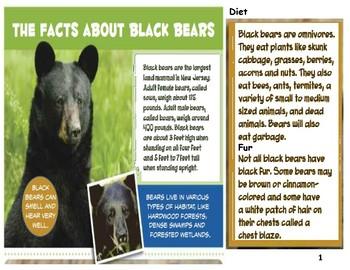 Black Bears Nonfiction Features Test