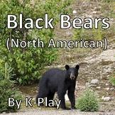 Black Bears (North American) - PowerPoint