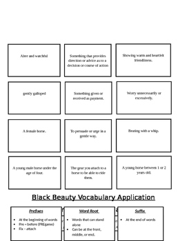 Black Beauty Vocabulary Unit