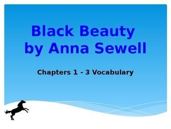Black Beauty Yearling Vocabulary