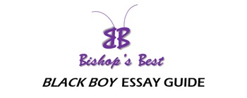 Black Boy by Richard Wright essay format guide