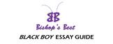 Black Boy by Richard Wright essay format guide