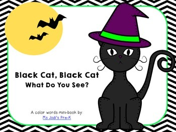 Black Cat, Black Cat What Do You See?