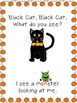 Black Cat, Black Cat, What Do You See?