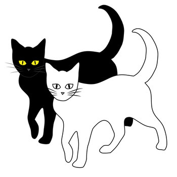 Black Cats / Halloween