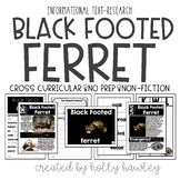 Black Footed Ferret-A Research Project