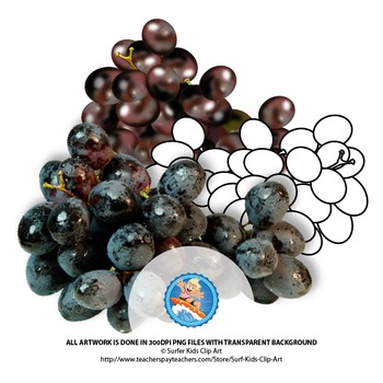 Black Grapes: Photo, Vector, Black and White Outline