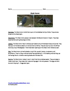 Black Heron - review article facts questions vocabulary wo