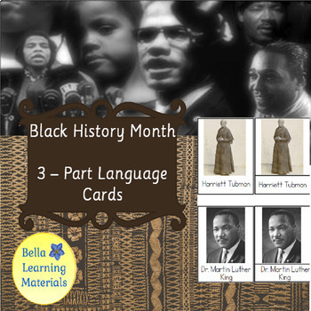 Black History Month - Montessori 3 Part Cards - Reading Classification