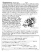 Black Holes and Supernova - Introduction - Reading Activity