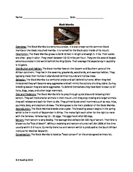 Black Mamba - Snake Review Article Questions Vocabulary Wo