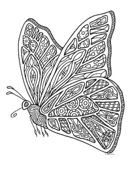 Butterfly Insect Coloring Page