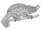Chameleon Reptile Zentangle Coloring Page