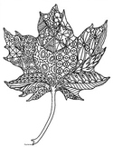 Maple Leaf Autumn Zentangle Coloring Page