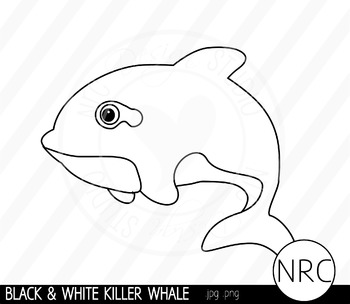 Black and White Killer Whale Clip Art- Commercial Use Clipart