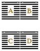 Black and White Stripes Banner