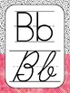 Black and White with a Pop of Color Alphabet Posters